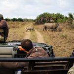 Safari Groepsreis Lodges - 30 DAGEN KAAPSTAD, ZUID-AFRIKA, NAMIBIË, BOTSWANA, VICTORIA FALLS, ZIMBABWE, JOHANNESBURG, KRUGERPARK & ESWATINI 81