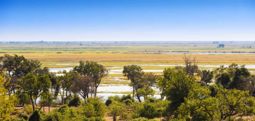 Safari Groepsreis Lodges 8 dagen botswana okavango delta en victoria falls avontuurlijk 56