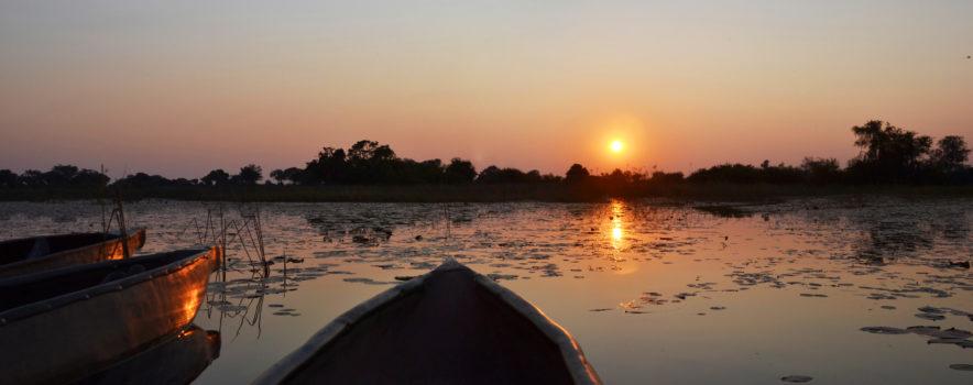 Safari Groepsreis Lodges 8 dagen botswana okavango delta en victoria falls avontuurlijk 48