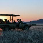 Safari Groepsreis Lodges - 8 DAGEN Kaapstad Tuinroute Tsitsikamma NP Addo Elephant NP 6