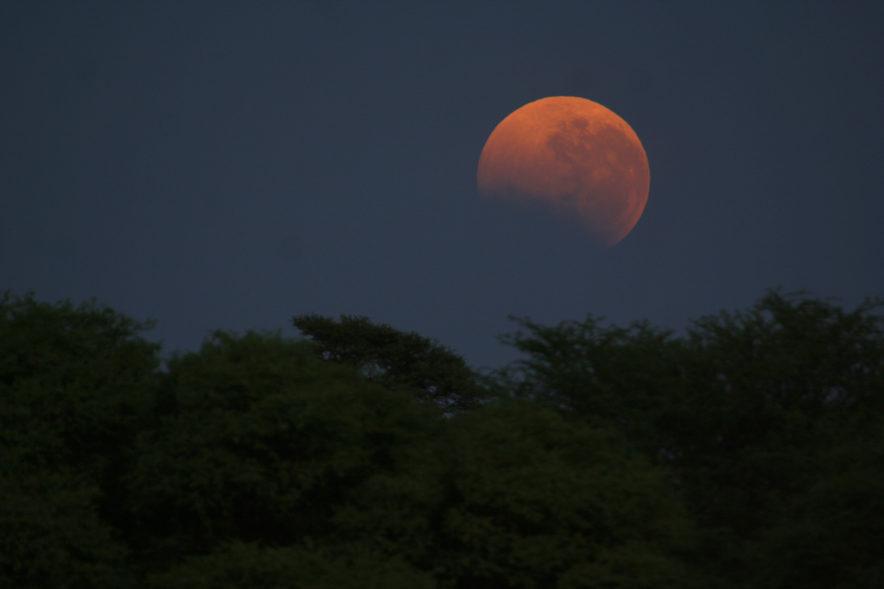 Safari Groepsreis Lodges - 14 DAGEN WINDHOEK, BOTSWANA, VICTORIA FALLS, ZIMBABWE, JOHANNESBURG 129