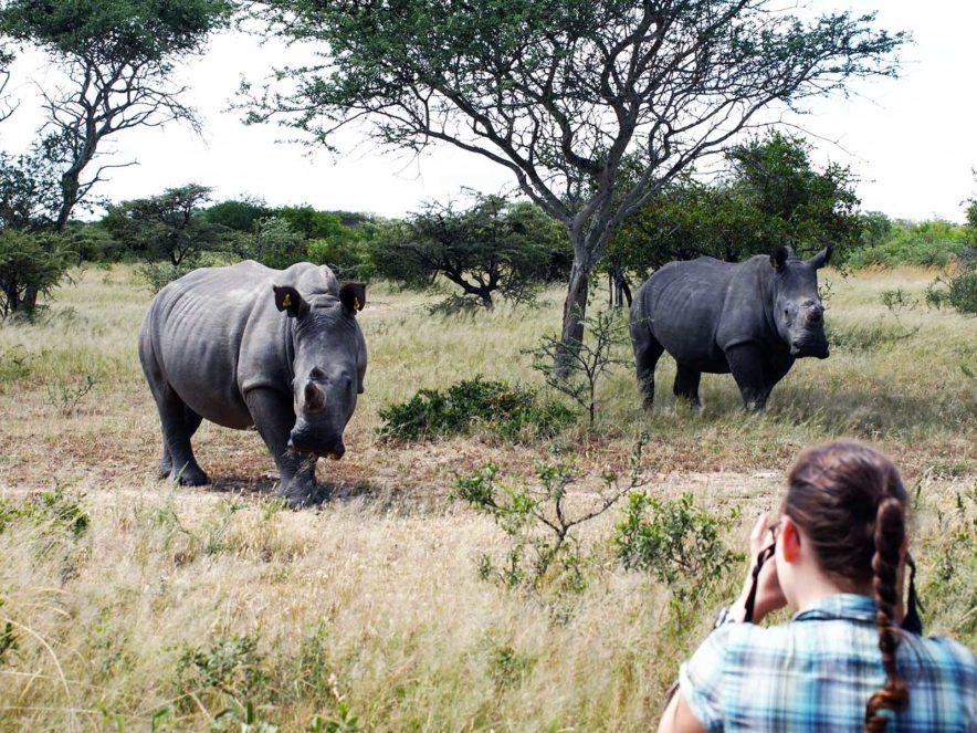 Safari Groepsreis Lodges - 14 DAGEN WINDHOEK, BOTSWANA, VICTORIA FALLS, ZIMBABWE, JOHANNESBURG 143