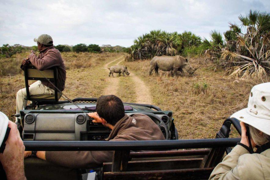 Safari Groepsreis Lodges - 14 DAGEN WINDHOEK, BOTSWANA, VICTORIA FALLS, ZIMBABWE, JOHANNESBURG 154