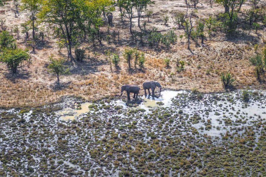 Safari Groepsreis Lodges - 14 DAGEN WINDHOEK, BOTSWANA, VICTORIA FALLS, ZIMBABWE, JOHANNESBURG 164