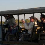 Safari Groepsreis Lodges - 20 DAGEN NAMIBIË, BOTSWANA & VICTORIA FALLS - Ontdekking 43