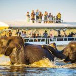 Safari Groepsreis Lodges - 20 DAGEN NAMIBIË, BOTSWANA & VICTORIA FALLS - Ontdekking 42