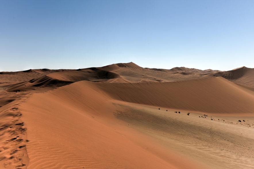 Safari Groepsreis Lodges - 20 DAGEN NAMIBIË, BOTSWANA & VICTORIA FALLS - Ontdekking 81