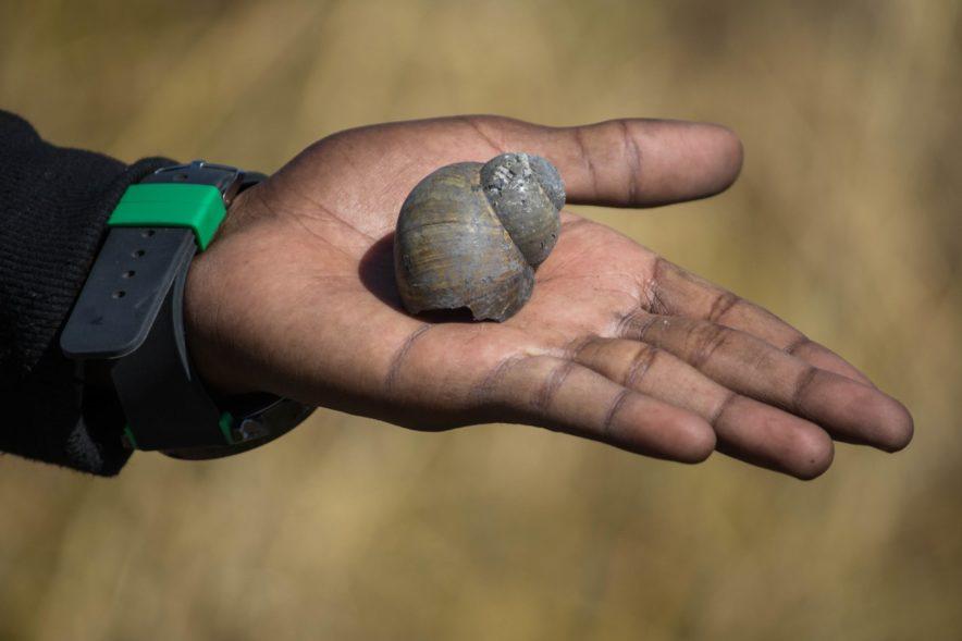 Safari Groepsreis Lodges - 20 DAGEN NAMIBIË, BOTSWANA & VICTORIA FALLS - Ontdekking 109