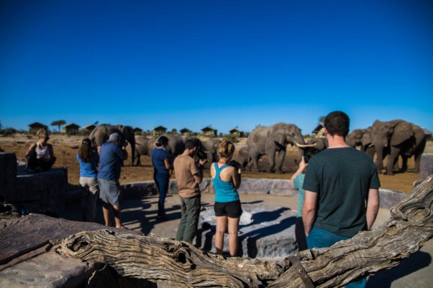 Safari Groepsreis Lodges - 20 DAGEN NAMIBIË, BOTSWANA & VICTORIA FALLS - Ontdekking 119