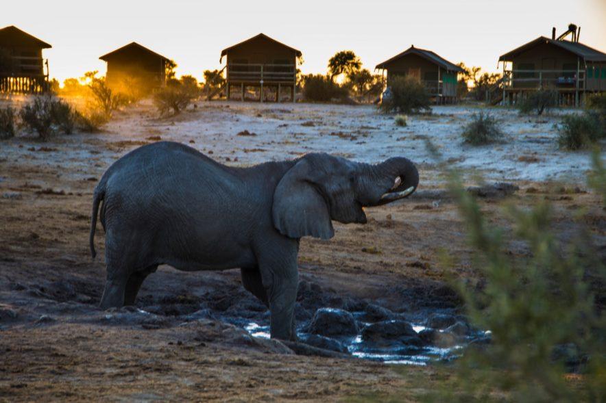 Safari Groepsreis Lodges - 20 DAGEN NAMIBIË, BOTSWANA & VICTORIA FALLS - Ontdekking 123