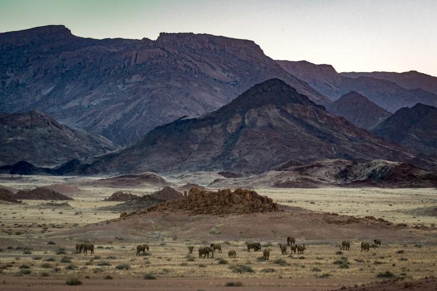 Safari Groepsreis Lodges - 20 DAGEN NAMIBIË, BOTSWANA & VICTORIA FALLS - Ontdekking 151