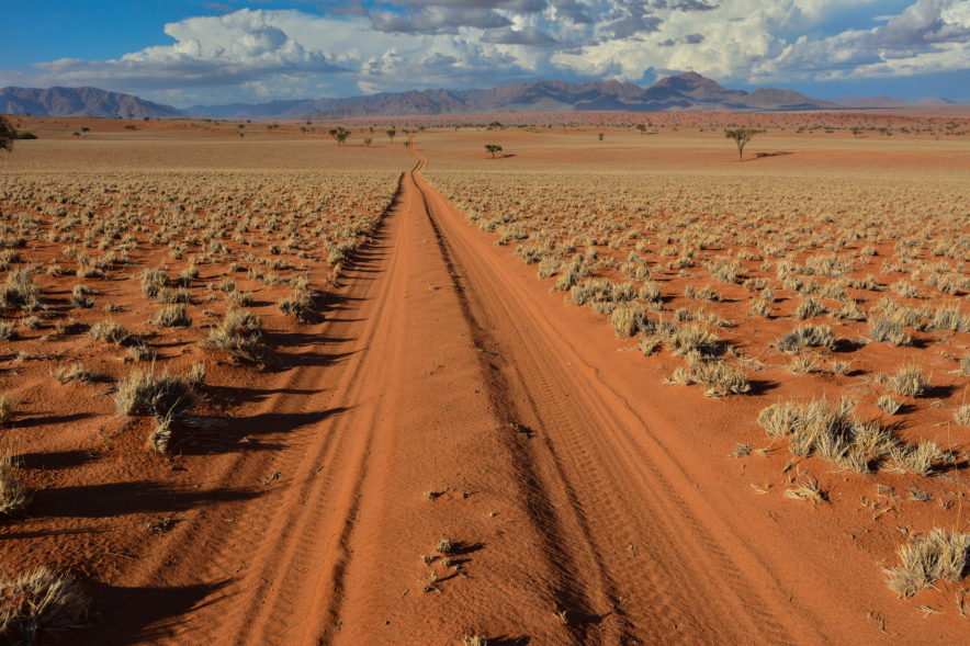 Safari Groepsreis Lodges - 20 DAGEN NAMIBIË, BOTSWANA & VICTORIA FALLS - Ontdekking 153